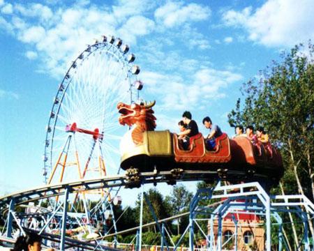 Buy Roller Coaster Slide Dragon for sale