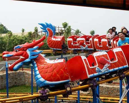 Roller Coaster Slide Dragon from China
